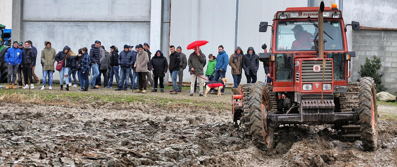 Calendario Fiere Agricole 2020.Fiera In Campo
